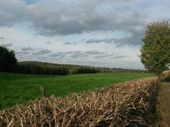 Delphobe wandelen in zuid Limburg 2014 2