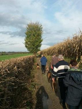 Delphobe wandelen in zuid Limburg 2014 3