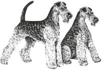 logo ATVN rechts 203x140