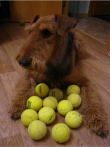 Babs en Boebie tas met tennisballen 4 -