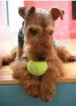 Babs en Boebie tas met tennisballen 8 -